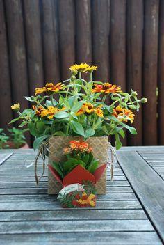 Klein bedankje - sierpot omgetoverd met de Gift Box Punch Board en bloemen en bladeren uit de Botanical Builder Framelits. #bloemen #bladeren #plant #bedankt #bedankje #cadeau  #Cardstock #DIY  #knutselen #papier #stansen #stempels #stempelset #creatief #pons #geschenk #framelits #versieren #sierpot