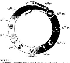 An image of the ouroboros in 'Just Six Numbers'. There are links between the mic. - An image of the ouroboros in 'Just Six Numbers'. There are links between the microworld of part - Rose Tattoos, Tatoos, Wicca, Magick, Eternal Return, Ouroboros Tattoo, Protection Symbols, Snake Art, Alone In The Dark