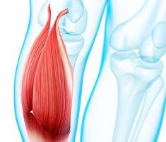 Kramplar ve kas ağrıları neden geceleri daha yoğundur?  Kramplar aniden ortaya çıkan, acı veren, şiddetli kas kasılmalarıdır. Vücudun herhangi bir bölgesindeki kas dokularında ortaya çıkabilen bu kasılmalar birkaç saniye ile birkaç dakika arasında devam edebilir. Kaslar kasılıp gevşeyerek...