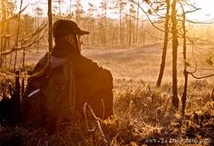 Beautiful morning in the swamp. Beautiful Morning, Photo Galleries, Waiting, Gallery, Roof Rack