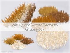Autumn and Winter Grass Pack for The Sims 4