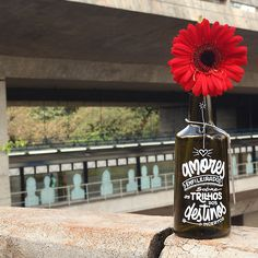 Poesia & Caligrafia: Inspiradores do Instagram ganham exposição coletiva em São Paulo