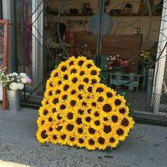 Summer Party or Wedding Sunflower Heart - Floral Arrangement. My Flower, Flower Power, Sunflowers And Roses, Daisies, Fresh Flowers, Sunflower Hearts, Sunflower Garden, Yellow Sunflower, Sunflower Pictures