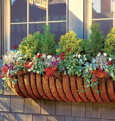 Pretty window boxes filled with plants and flowers, perfect for your patio and deck too.