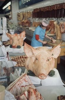 East German butcher shop, displaying whole pigs heads. 1967