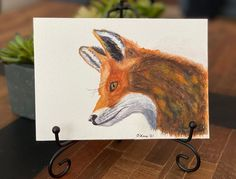 "Barbara Ford on Instagram: ""Not my best work but I think the #redfox is a beautiful creature. I never could come to a good stopping place, so I finally just called it…"" Red Fox, I Am Awesome, Moose Art, Ford, Creatures, Watercolor, Places, Animals, Beautiful"
