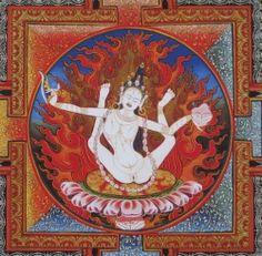 Risultati immagini per Pandaravasini