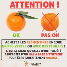Healthy Tips, Healthy Recipes, French Expressions, Naturopathy, Food Facts, Sports Nutrition, Girl Blog, True Beauty, Good To Know