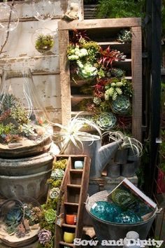 I need to add a succulent garden to my porch. Love the hodge podge look of this one.