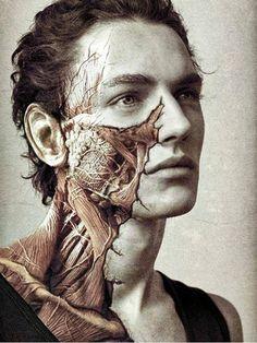 Anatomical Face Tattoo