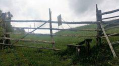 Blidaru, cetatea unde trebuie să sari pârleazul – Patrimoniul mondial în România Utility Pole, Sari, Saree, Saris