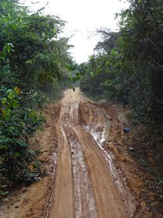 Choosing Happiness: Bad roads in Cameroon