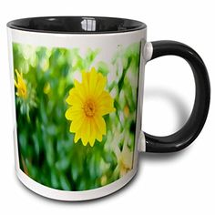 Jos Fauxtographee Realistic - A Bright Yellow Flower Done in a Watercolor Finish with Green Leaves in The Background - 11oz Two-Tone Black Mug (mug_52039_4) 3dRose http://www.amazon.com/dp/B013C32NEM/ref=cm_sw_r_pi_dp_4maYvb0HYRQYG