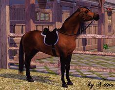 sims 3 pets horses Arabians