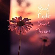 Good Night Images Hd, Beautiful Good Night Images, Good Night Messages, Good Night Quotes, Beautiful World, Good Knight, Good Night Prayer, Morning Blessings, Gif