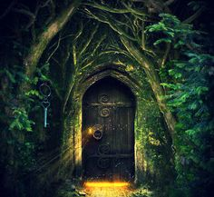 Image result for through the magic door