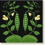 Stylized 12 x 18 Framed Prints by Wildflower Graphics Botanical Drawings, Botanical Illustration, Botanical Prints, Illustration Art, Art Nouveau Poster, Art Nouveau Tiles, Art Deco, Flower Prints, Flower Art
