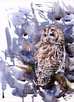 Saatchi Online Artist Lucy Newton; Mixed Media, Tawny Owl #art