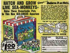 """""""Sea Monkeys"""" Ads, 1960s"""