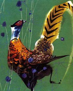 My Animals by Mirko Hanak My Animal, Bird, Animals, Animales, Animaux, Birds, Animal, Animais
