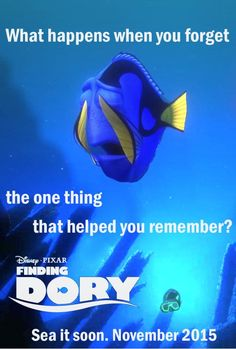 """Disney has just announced plans for the sequel in April 2013. We do know that it revolves around Dory, the Pacific regal blue tang with short-term memory loss. Now, we get to focus on her and her quest to find her family. The events of """"Finding Dory"""" take place one year after """"Finding Nemo""""."""
