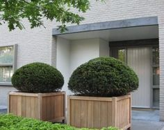 wooden planters supplied by koberg