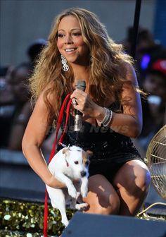 Mariah & her JRT.