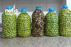 Yeşil Zeytin Yapımı (Çizme Zeytin) Tarifi nasıl yapılır? 206 kişinin defterindeki bu tarifin resimli anlatımı ve deneyenlerin fotoğrafları burada. Yazar: Hatice İnce How To Make Pickles, Cooking Recipes, Healthy Recipes, Turkish Recipes, Soup And Salad, Food Storage, Food And Drink, Homemade, Fruit