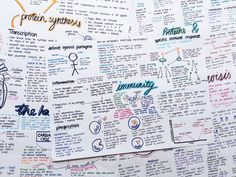 "revisereblogrevise: "" Just a few of my Biology posters """