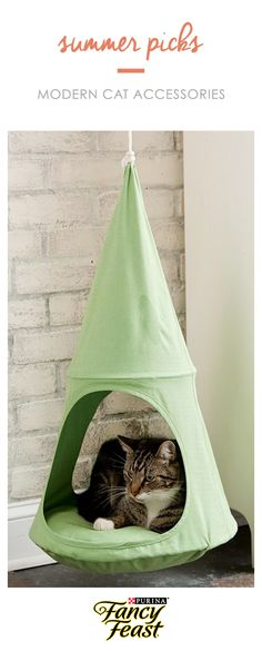 Visit our blog for our picks on modern cat accessories.