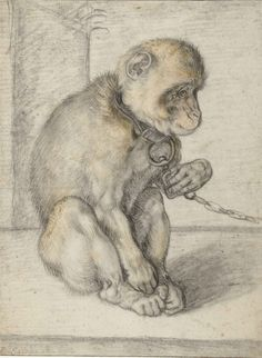 3 Monkey on a Chain, seated, Hendrick Goltzius, 1592 - 1602.jpg