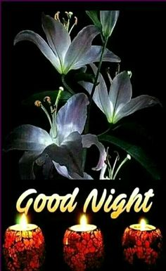 65 Best Good Night Wallpaper Images Good Morning Good Night Good