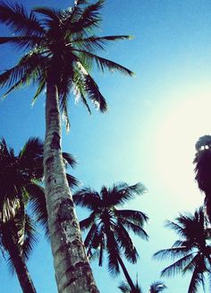 Tingko Beach Cebu