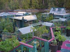 This Couple Spent Decades Building Their Own Self-Sustaining Island - mindbodygreen.com