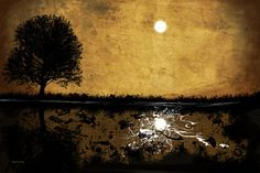 Moonlight Graphic Art on Canvas