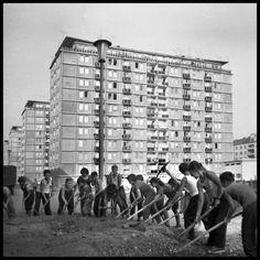 sídlisko POKROK Bratislava, Socialism, Old City, Cities, The Past, Photo Wall, Old Things, Gallery, Chemnitz