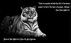 Tiger-Samurai.jpg (490×299)