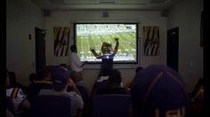 LSU'S Mike the Tiger loves chases laser pointers, almost as much as competing in the Capital One Mascot Challenge.- iSpot.tv