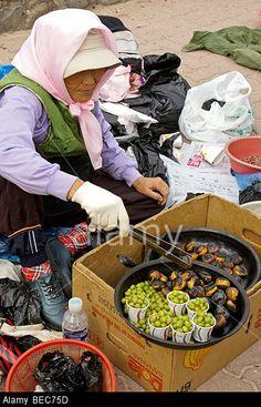 Street vendor roasting chestnuts, South Korea Stock Photo