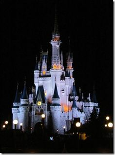 Disney World...Magic Kingdom must rides by age