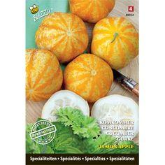 Specialties Komkommer Lemon Apple