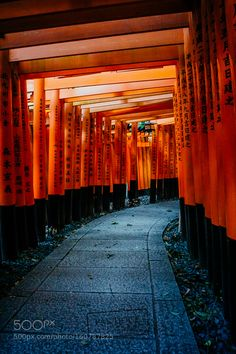 """Light and shadows at Fushimi Inari - Kyoto Go to http://iBoatCity.com and use code PINTEREST for free shipping on your first order! (Lower 48 USA Only). Sign up for our email newsletter to get your free guide: """"Boat Buyer's Guide for Beginners."""""""