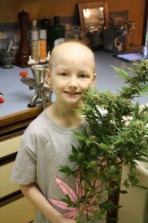 Benefits to raw cannabis juicing: Cannadad Blogs on raw cannabis jucing!