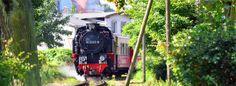 """Dampfzugnostalgie mit 900mm Spurweite / steam train called """"Molli"""" in Kuehlungsborn, Baltic Sea, Germany, Europe"""