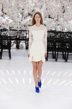 クリスチャン ディオール(Christian Dior) Haute Couture 2014AWコレクション Gallery33