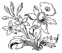 Vector clip art of little flower in black and white