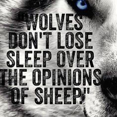 WOLVES DON'T LOSE SLEEP OVER THE OPINIONS OF SHEEP.""