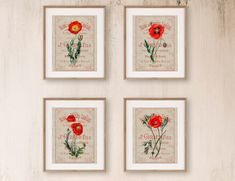 Colorful Wall Art Set of 4 Botanical Flower Wall Decor Red | Etsy Colorful Wall Art, Floral Wall Art, Art Prints For Sale, Flower Wall Decor, Modern Farmhouse Decor, Paris, French Art, Red Poppies, Wall Art Sets