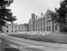 Whiteabbey: Sacred Heart Convent & Schools, Belfast, Co. Antrim