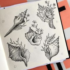 No photo description available. Seashell Tattoos, Flower Tattoos, Ocean Tattoos, Mermaid Tattoos, Friend Tattoos, New Tattoos, Future Tattoos, Cool Tattoos, Ink Tattoo
